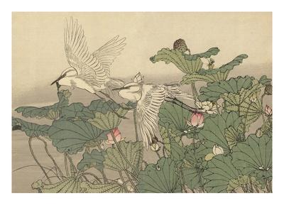 https://imgc.artprintimages.com/img/print/egrets-and-lotus_u-l-pf2blf0.jpg?p=0