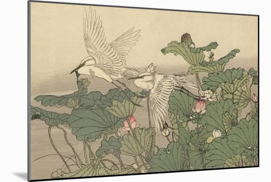 Egrets and Lotus-Imao Keinen-Mounted Giclee Print