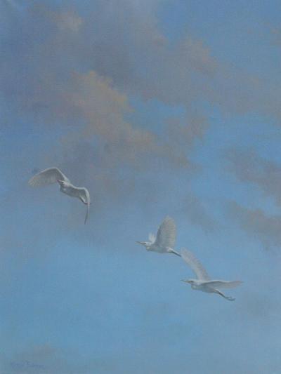 Egrets-Michael Jackson-Giclee Print