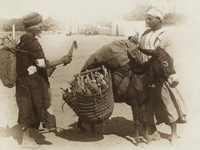 Egypt - Buying Corn from a Donkey's Panniers--Photographic Print