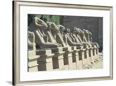 Egypt, Old Thebes, Luxor, Karnak Temple Complex, Precinct of Amun-Re, Avenue of Ram-Headed Sphinxes--Framed Giclee Print