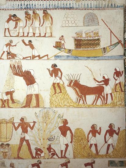 Egypt, Tomb of Royal Estate Supervisor Menna, Vestibule, Mural Paintings, Working in Fields--Giclee Print