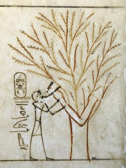 Egypt, Tomb of Thutmose III, Mural Painting of Pharaoh Drinking at Isis in Guise of Tree--Giclee Print