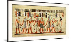 Egyptian Papyrus, Design VI