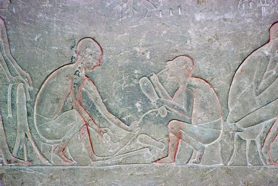 Egyptian relief showing shoemakers, 14th century BC Artist: Unknown-Unknown-Giclee Print