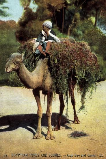 Egyptian Types and Scenes, Arab Boy and Camel, Junge Auf Einem Kamel--Giclee Print