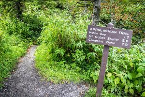 The Appalachian Trail. the Appalachian Trail as it Approaches Clingmans Dome. at over 6000 Ft. This by ehrlif