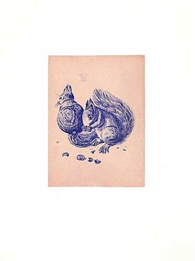 Eichhörnchen Blau/Altrosa-Albrecht D?rer-Collectable Print