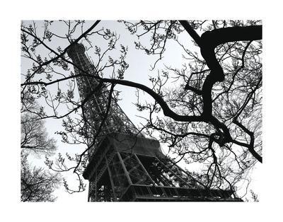 https://imgc.artprintimages.com/img/print/eiffel-iii_u-l-f8cg990.jpg?artPerspective=n