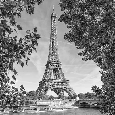 https://imgc.artprintimages.com/img/print/eiffel-tower-and-river-seine-monochrome_u-l-f9jxvc0.jpg?artPerspective=n
