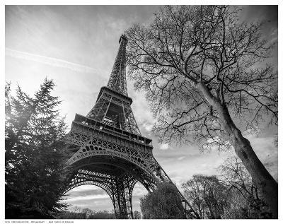 Eiffel Tower With Tree-St?phane Graciet-Art Print
