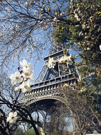 Eiffel Tower-Michel Lipchitz-Photographic Print