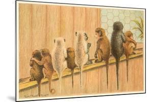 Eight Monkeys, Yum