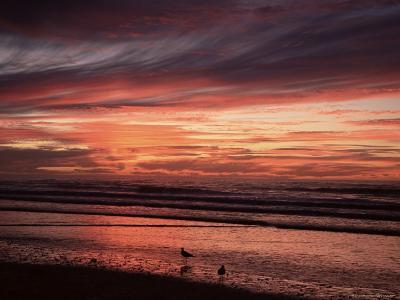 Eighty Mile Beach, Western Australia, Australia, Pacific-Jochen Schlenker-Photographic Print