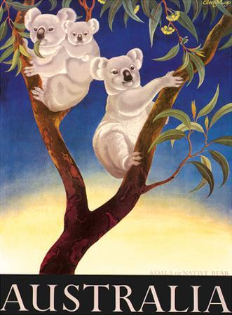 Australia Koala c.1956