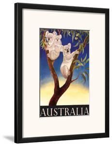 Australia Koala c.1956 by Eileen Mayo