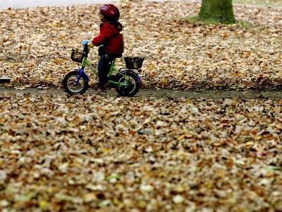 Ein Kind Radelt Am Dienstag, 8.November 2005, Zwischen Dem Herbstlaub--Photographic Print