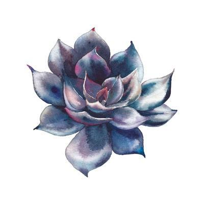 Watercolor Black Succulent