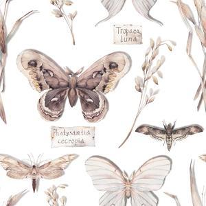 Watercolor Butterfly Pattern by Eisfrei