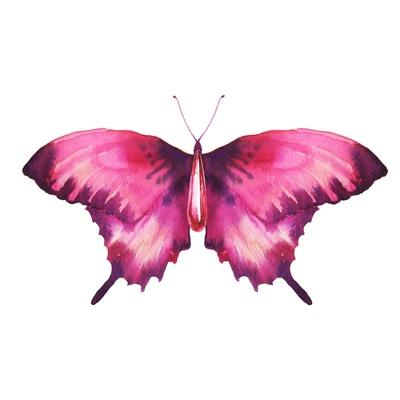 Watercolor Red Butterfly with Ruby
