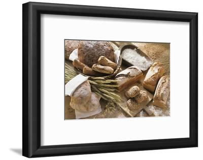 Still Life with Several Types of Bread and Rolls
