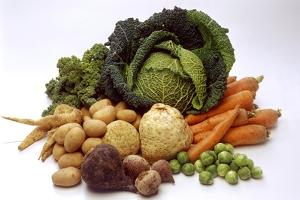 Various Types of Root Vegetables, Turnips and Cabbage by Eising Studio - Food Photo and Video