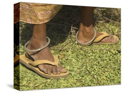 Female Farmer's Feet Standing on Henna Leaves, Village of Borunda, India