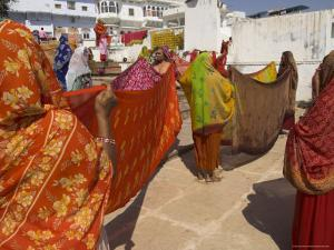 Group of Women Drying Their Saris by the Sacred Lake, Pushkar, Rajasthan State, India by Eitan Simanor