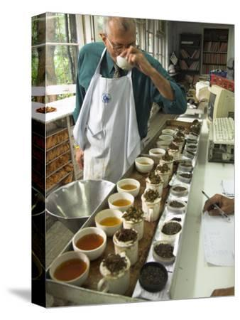 Ravi Kidwai, Tea Specialist, Tasting and Assessing Tea, Kolkata