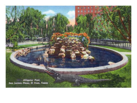 El Paso, Texas - San Jacinto Plaza, View of the Alligator Pool, c.1940-Lantern Press-Art Print