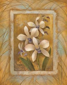 Illuminated Orchid I by Elaine Vollherbst-Lane