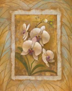 Illuminated Orchid II by Elaine Vollherbst-Lane