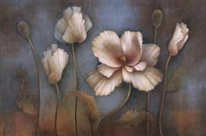 Poppy Melody by Elaine Vollherbst-Lane