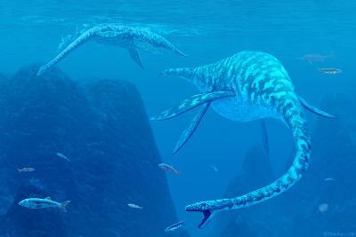 Elasmosaurus Marine Reptiles-Chris Butler-Photographic Print