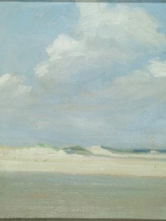 Dunes at the Sea (Laguna Beach)