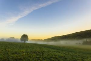 Autumn (fall) morning mists, distant moors, Chatsworth Park, home of the Duke of Devonshire, Cheste by Eleanor Scriven