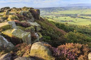 Baslow Edge, early autumn heather, view to Baslow village, Peak District Nat'l Park, England by Eleanor Scriven