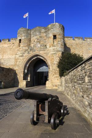 Cannon, Lincolnshire by Eleanor Scriven