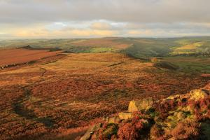 Hathersage Moor from Higger Tor, sunrise in autumn, Peak District National Park, Derbyshire, Englan by Eleanor Scriven