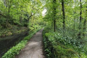 Historic Cromford Canal and Tow Path in Spring by Eleanor Scriven