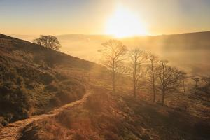 Misty and frosty sunrise over skeletal trees above the Hope Valley in winter, Castleton, Peak Distr by Eleanor Scriven