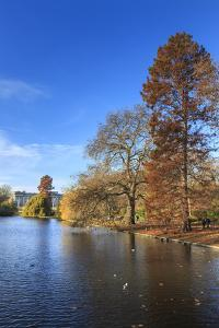 St. James's Park, with view across lake to Buckingham Palace, sunny late autumn, Whitehall, London, by Eleanor Scriven