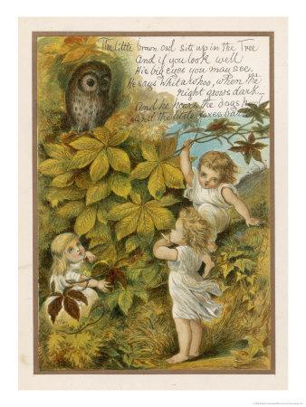 The Little Brown Owl Sits up in the Tree and if You Look Well His Big Eyes You May See!