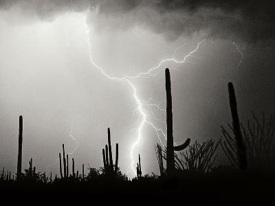 Electric Desert II BW-Douglas Taylor-Photographic Print