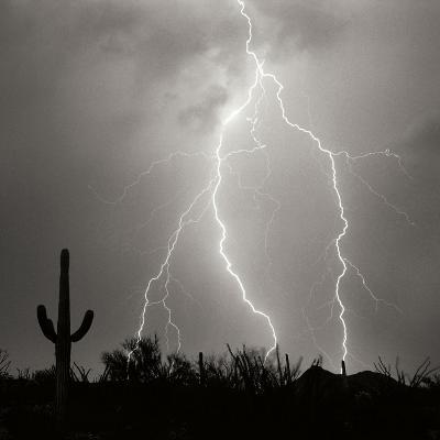 Electric Desert III BW-Douglas Taylor-Photographic Print