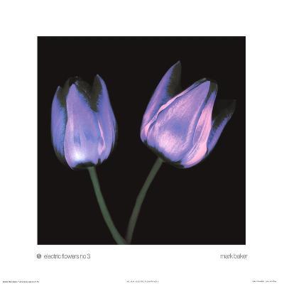 Electric Flowers No.3-Mark Baker-Art Print