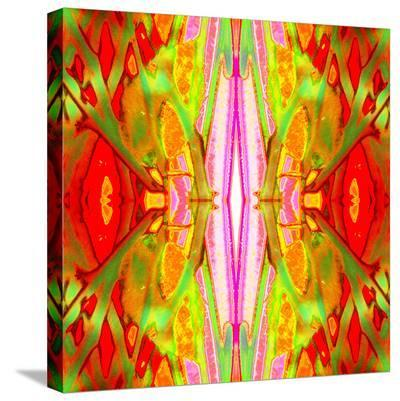 Electric Twigs-Rose Anne Colavito-Stretched Canvas Print