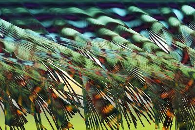 Electron Flow-Eric Heller-Photographic Print