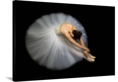 Elegance-Pauline Pentony Ba-Stretched Canvas Print