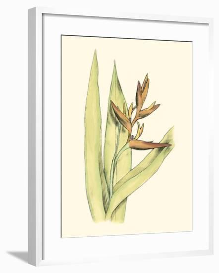 Elegant Tropics V-Jennifer Goldberger-Framed Art Print